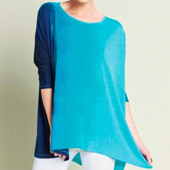 5dae0f2d32d Clara Sunwoo Tops | Turquoise Ombre Tunic Small Nwt | Poshmark